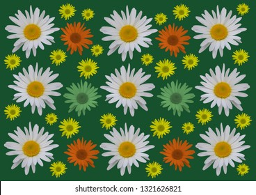 Daisy flowers with dark green color background