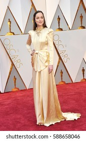 Dakota Johnson at the 89th Annual Academy Awards held at the Hollywood and Highland Center in Hollywood, USA on February 26, 2017.