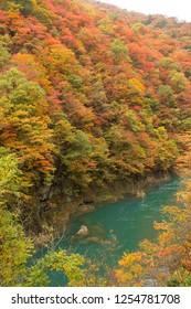 dakugaeri gorge, akita, japan