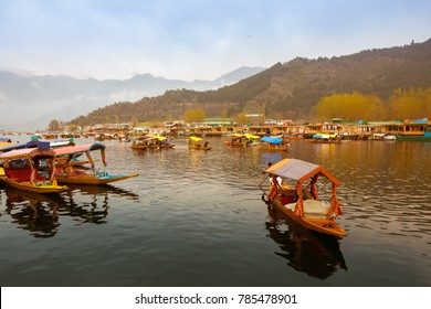 Dal Lake, City of water at Kashmir. Lifestyle of people transportation around Dal Lake city in the morning.