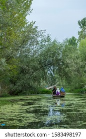 Dal Lake,Srinagar,Kashmir,India-July 01,2016:Local villagers commuting in a small boats in Dal lake,Srinagar,Kashmir,India