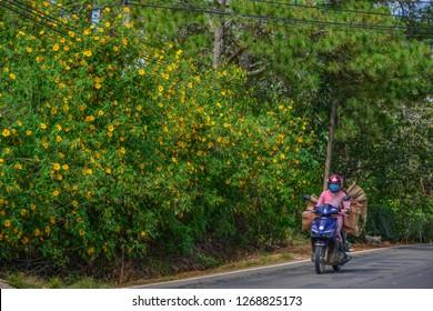 Dalat, Vietnam - Nov 12, 2018. Riding motorbike on mountain road in Dalat, Vietnam. Dalat is located 1,500 m above sea level in the Central Highlands region.