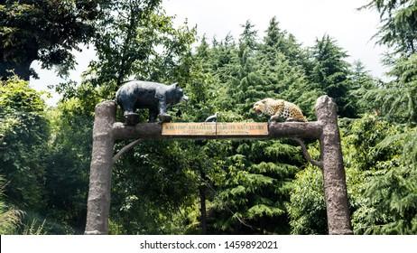 Dalhousie, Chamba, Khajjiar, Himachal - 21 July, 2019 - Entrance to Kalatop Wildlife Sanctuary under the forest department of Himachal Pradesh