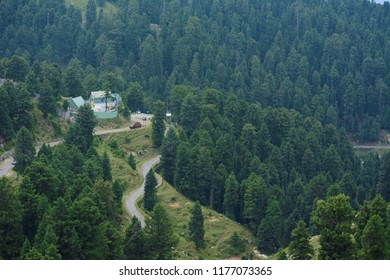 Dalhousie, Himachal Pradesh/India-June Monday 2018: Dainkund Peak is one of the most beautiful places to trek in Dalhousie and it is truly an offbeat location with one of a kind experience! Epic place