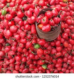 Dalle Khursani (round chili) also call Akbare khursani