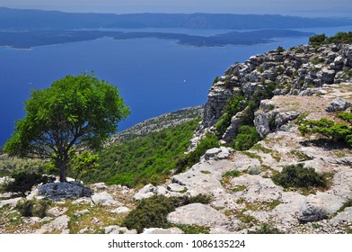 Dalmatian landscape view from Vidova Gora at Hvar, Brac, croatia
