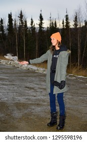 Dalton Highway, Alaska, United States - October 13, 2013: Female tourist hand feeding a gray jay at the stop for the Arctic Circle sign on the Dalton Highway in Alaska with model release