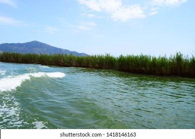 Dalyan River flowing into the Mediterranean Sea where the Caretta-Caretta turtles live