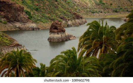 Dam with interior rock and palm trees, La sorrueda, Gran canaria, Canary islands