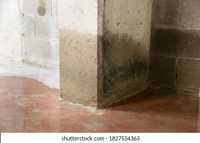 Damage to a concrete column from water in the basement