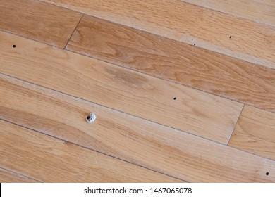 Damage to oak wood flooring due to wood boring beetles.