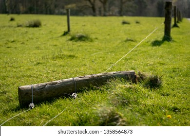 Damaged electric fence on farmland. Weathered broken wooden pole and wires on the ground at a cattle grazing field. Agriculture problem concept.