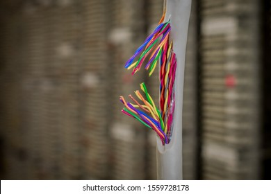Damaged insulating material of a stranded telephone wire. Gap color telecommunication cable. Concept of poor internet connection and communication problems. Communication breakdown is close up