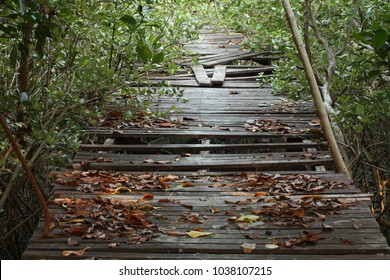 Damaged walking path in the park