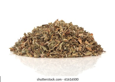 Damiana aphrodisiac herb leaves and flowers used in herbal medicine, isolated over white background. Modern day equivalent is viagra. Tunera diffusa