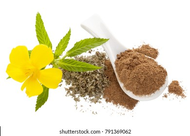 Damiana flower and damiana dried leaves and powder isolated on white background from above. Flat lay.