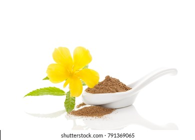 Damiana herb powder in spoon. Isolated on white background.