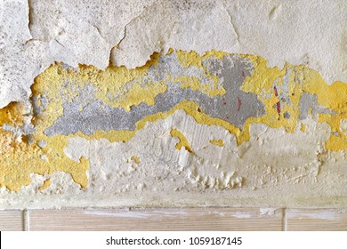 Damp and moldy wall. Water Leaks and peeling paint