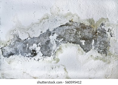 Damp and moldy wall. Water Leaks. close-up