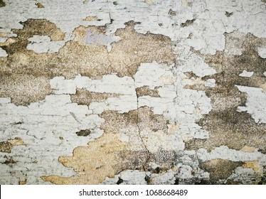 dampness wall texture background, old concrete surface detail, peeling paint cement surface, dirty concrete structure, moss brick wall, close up abandoned building grunge texture