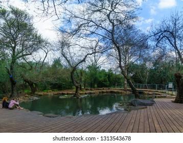 Dan, Israel - February 12, 2019: The wading pool in Tel Dan nature reserve, with visitors, Northern Israel