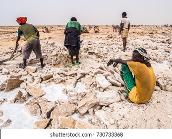 DANAKIL DEPRESSION, ETHIOPIA - JUNE 29, 2016: Afar man mining salt from salt flats in Afar region, Danakil Depression, Ethiopia.