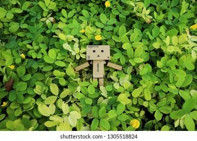 danbo among leafs