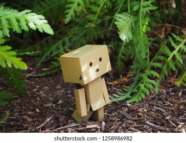 Danbo or banboard a little cute robot cartoon toy in natural background, November 2018