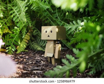 Danbo or Danboard a little cute robot cartoon toy in a natural background, November 2018