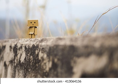 danbo. Danbo first appeared in chapter 28 of the manga,first issued in April 2006.The Japanese company Kaiyodo has produced since late 2007.