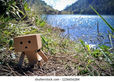 Danbo at Ranu Kumbolo