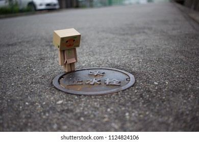 Danbo standing on road