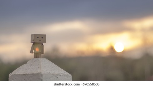 danbo in sunset. Danbo first appeared in chapter 28 of the manga,first issued in April 2006.The Japanese company Kaiyodo has produced since late 2007.