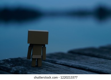 Danbo toy feeling sadness looking at the lake