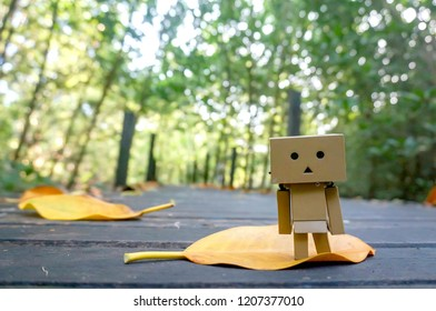 Danbo toy in the forest