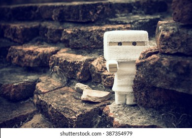 Danbo toy is the mummy.