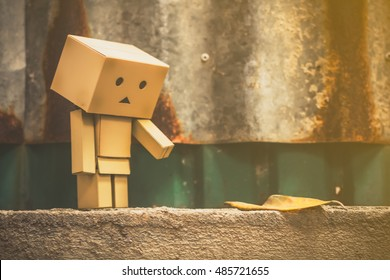 Danbo toy on the wall.