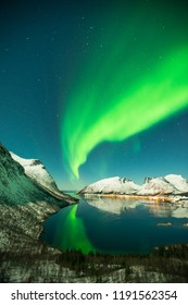 Dancing aurora over the sky of senja