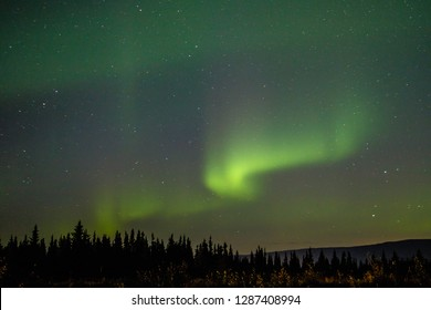Dancing night sky as magical show of Far North, aurora chasing, northern light viewing adventure