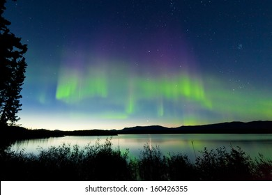 Dancing Northern lights  Aurora borealis  in summer over northern horizon of Lake Laberge  Yukon Territory  Canada  at early dawn