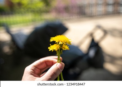 Dandelion car in one Hand, holding in front of a child
