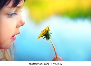 Dandelion flower, a cute little girl holding a dandelion, focus on dandelion
