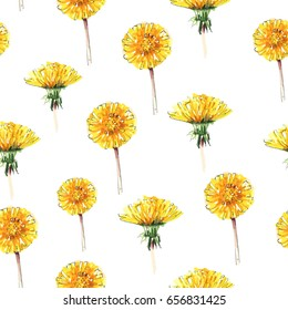 Dandelion flower, yellow flowers. Seamless floral pattern. Watercolor