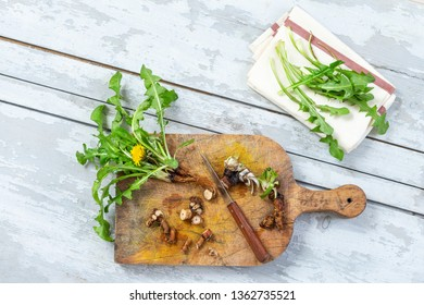 Dandelion root and whole plant on a grey table. with root cut on cutting board with knife