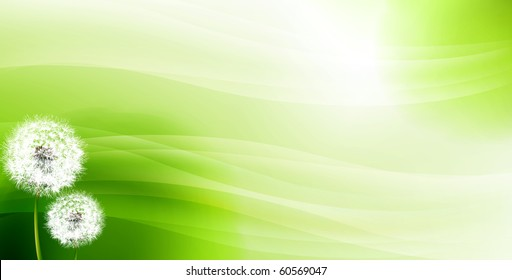 Dandelions against an abstract green background