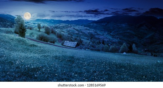 dandelions on rural field in mountains at night in full moon light. beautiful springtime landscape. village in the distance valley.