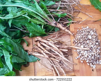 Dandelions roots and leaves, organic healthy herbs