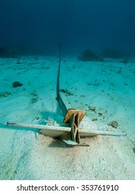 Danforth anchor and chain in a sandy bottom