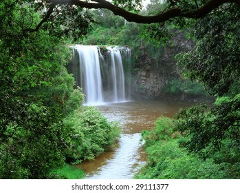 Dangar Falls, near Dorrigo, Northern New South Wales Australia