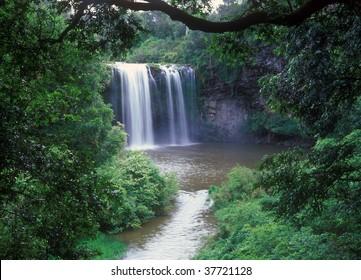 Dangar Falls, near Dorrigo, Northern New South Wales,Australia